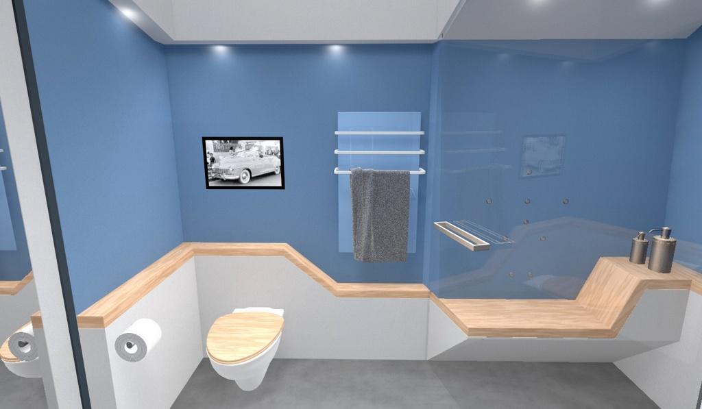 salle de bain pmr images